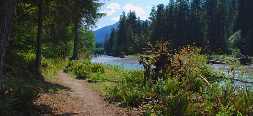 Best 10 Hiking Trails in US