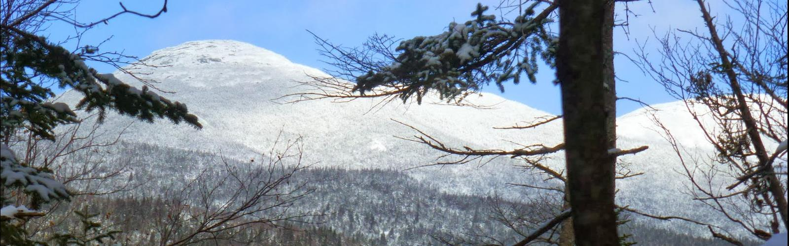 Calamity Mountain, New York - Hiking  tree outdoor sky snow covered plant winter nature conifer forest wooded hillside day