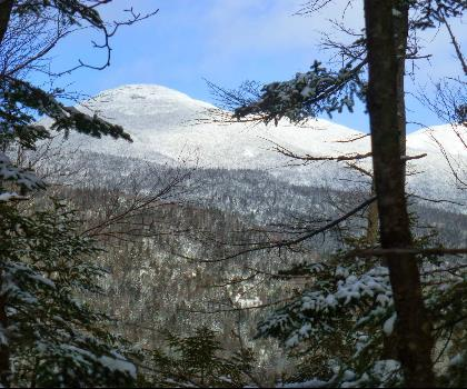 Calamity Mountain, New York  tree outdoor sky snow covered plant winter nature conifer forest wooded hillside day