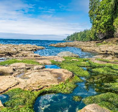 Juan de Fuca Marine Trail, British Columbia photo